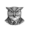 hipster owl suit woodcut vector image vector image