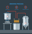 home brewing infographic process vector image vector image