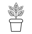 line plant inside flowerpot to ecology vector image vector image