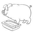 pig stands next to trough for coloring vector image vector image
