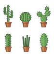set of cactuse vector image