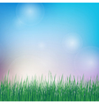 Spring background with green grass vector image vector image