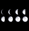 creative of realistic moon vector image