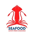 Fresh marine red squid for seafood design vector image vector image