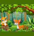 landscape forest cartoon of green in spring with t vector image