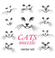 abstract cats muzzle set vector image