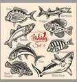 american fish - set 1 for creative design vector image vector image