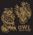 bird owl wing fly gold vintage vector image vector image