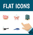 Flat icon sea set of fish cachalot alga and