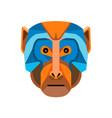 rhesus macaque head flat icon vector image vector image