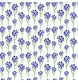 Watercolor saffron herb seamless pattern vector image vector image