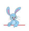 bunny cartoon character image vector image