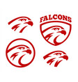 Falcon or hawk head sport logo mascot design set