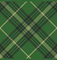 green check plaid tartan seamless pattern vector image vector image