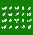 green eco set white leaves icons vector image