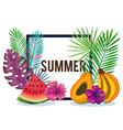 tropical garden with banana and watermelon vector image vector image
