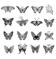 Black butterfly logo set vector image vector image
