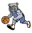 bulldog basketball mascot vector image vector image