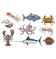 cartoon set of edible sea animals vector image
