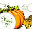 colorful pumpkin hand drawn vector image