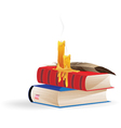 Extinguished candles and books vector image vector image