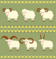 goats and sheep with different horns vector image vector image