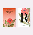 macro protea realistic flower hand-drawn vector image