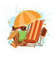 summer time colorful concept vector image vector image