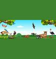 wild animals in the zoo vector image vector image