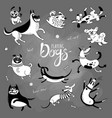 playing dogs funny lap-dog happy pug mongrels vector image