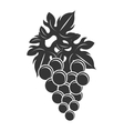 black bunch of gapes graphic vector image vector image