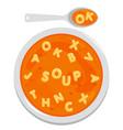 bowl alphabet pasta soup vector image