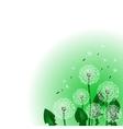 Floral design Dandelion vector image