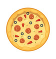 popular pizza italian cook and pizzas delivery vector image vector image