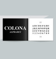 premium font and alphabet set lettering design vector image vector image