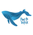 whale isolated on white background vector image vector image