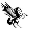 beautiful black pegasus sign vector image