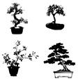Bonsai sillhouette vector image vector image