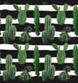 cactus plant seamless pattern vector image vector image