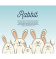 cartoon icon rabbit design isolated vector image vector image