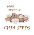 chia seeds organic ingredient healthy eco food vector image vector image