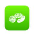 nuts icon green vector image