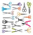 scissor set professional pair of scissors vector image vector image