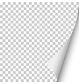 sheet transparent paper with curled corner vector image