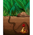 Snake living under the ground vector image vector image