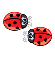 two ladybugs vector image vector image