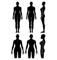 Woman mannequin outlined silhouette torso vector image vector image