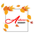 autumn season orange autumn leaves square frame ve vector image vector image