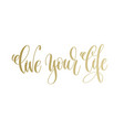 live your life - golden hand lettering inscription vector image