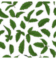 seamless pattern holly ilex branch with berry vector image